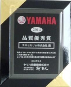 excel-award
