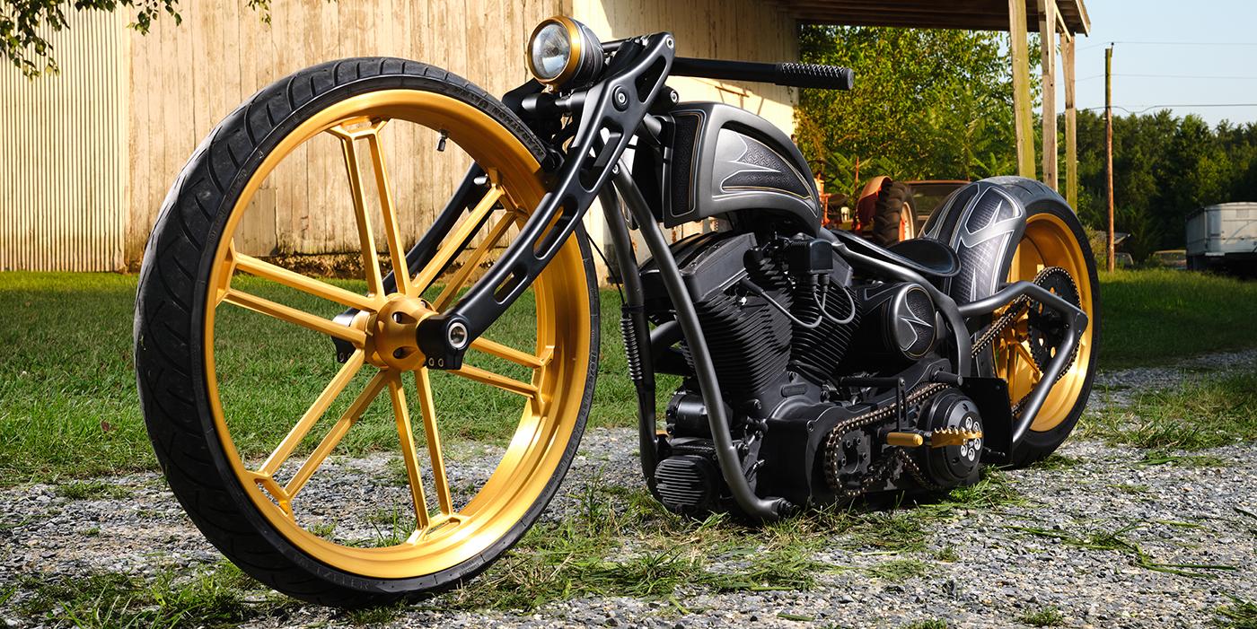 Custom 2005 Harley-Davidson Softail Night Train